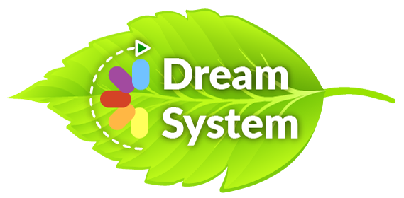 Dream System